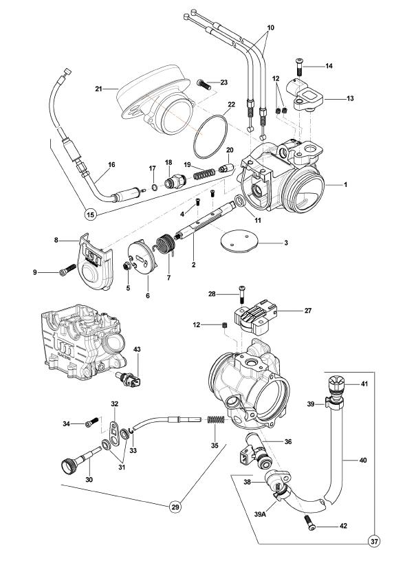 Throttle Body Sensors